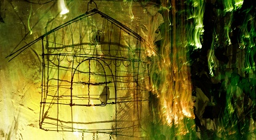 'Caged bird