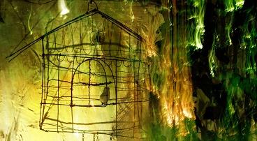 'Caged bird